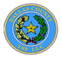 Dallas COunty VSF